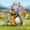 Madagascar 2: Escape 2 Africa (2008)