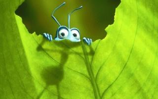 A_Bug`s_Life_01