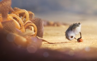 Pixar_Shorts_Piper_03
