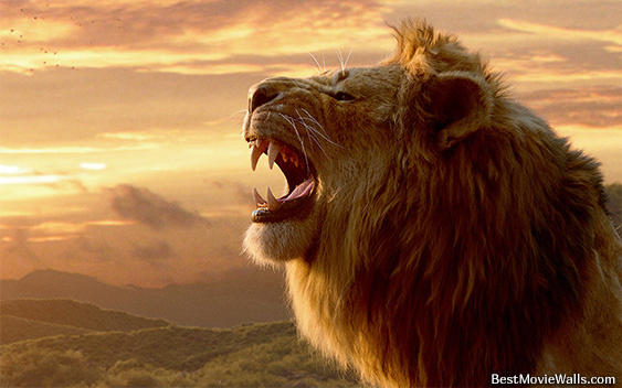 The Lion King CG