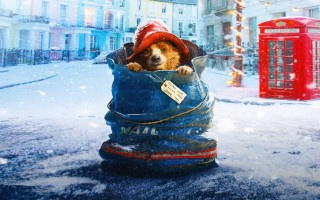 Paddington_Bear_05
